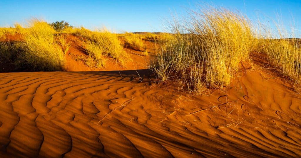Sossusvlei photo hotspots